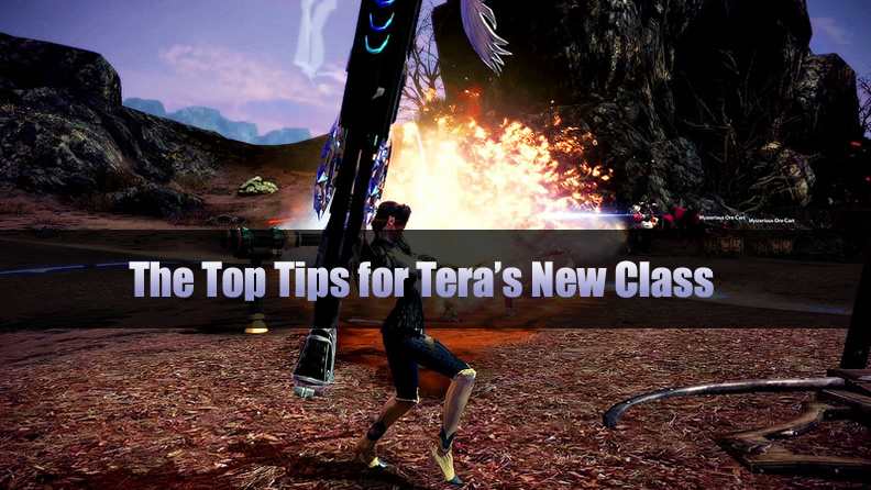 The Top Tips for Tera's New Class – Gunner